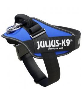 JULIUS K9...