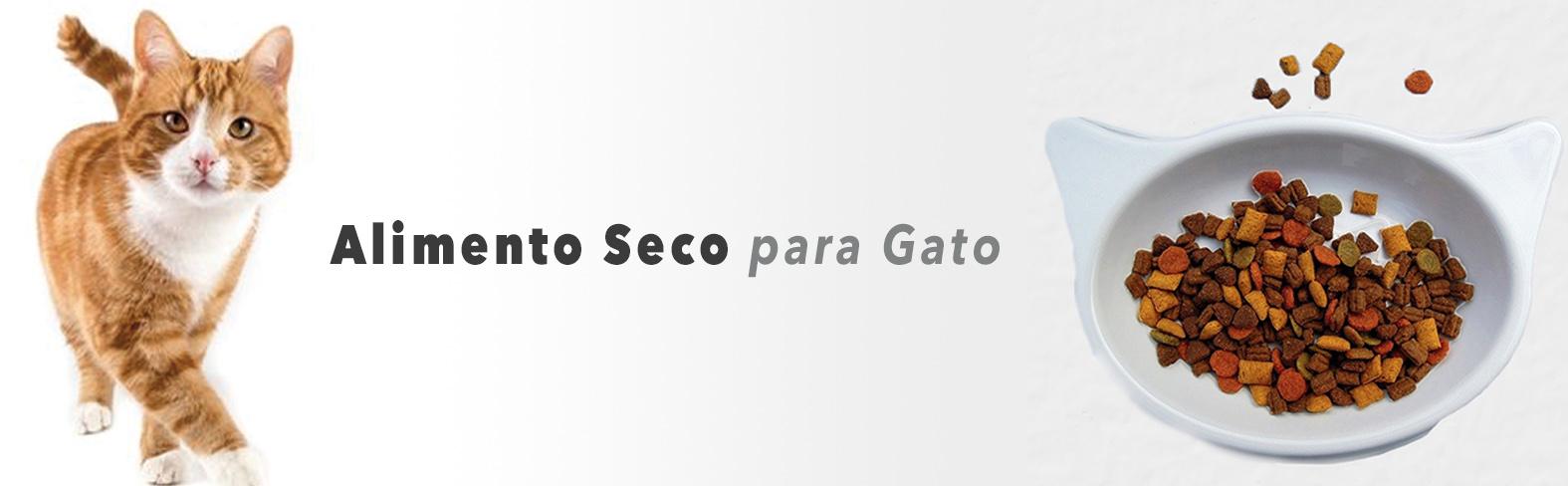CATEGORIA GATO ALIMENTO SECO web.jpg